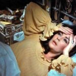 Night Watch (1973)