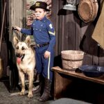 Adventures of Rin-Tin-Tin, The