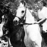 White Horses, The